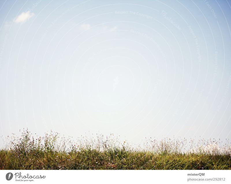 Über die Sache wachsen. Kunst ästhetisch Grasland Grasnarbe grasgrün Graswiese Grassteppe Himmel (Jenseits) Sommer Frühling Bodenbelag Erde Farbfoto