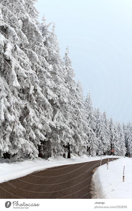 Landstrasse Ausflug Winterurlaub Umwelt Natur Landschaft Himmel Eis Frost Schnee Baum Wald Verkehrswege Straße Wege & Pfade Landstraße einfach kalt Tugend