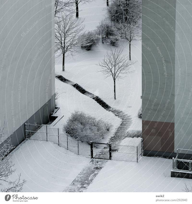 Grand Canyon Natur Stadt Pflanze Baum Landschaft Winter Haus Umwelt kalt Wand Schnee Wege & Pfade Mauer Eis Wetter Tür