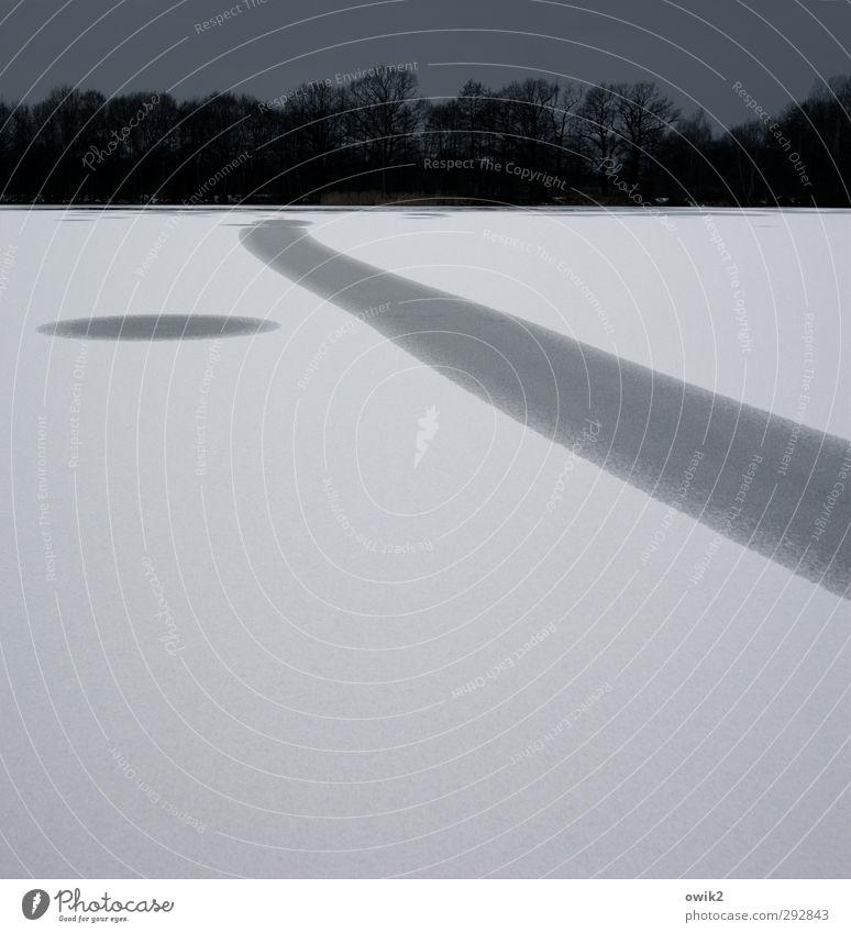 Schnee von vorgestern Umwelt Natur Landschaft Pflanze Wolkenloser Himmel Winter Klima Wetter Schönes Wetter Eis Frost Baum Wald See frieren dunkel einfach