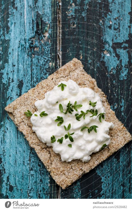 Knäckebrot Lebensmittel Käse Milcherzeugnisse Kräuter & Gewürze Frischkäse Ernährung Frühstück Bioprodukte Vegetarische Ernährung Diät Lifestyle Gesundheit