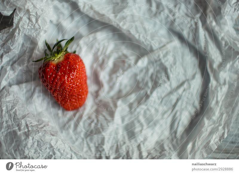 Frische Erdbeere Erdbeeren erdbeeren rot reif eine Single einfach vereinfacht Objekt Hintergrund Lebensmittel organisch Frucht geschmackvoll frisch Gesundheit