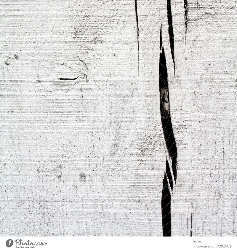 Versteck Haus Riss Maserung Astloch Papier Holzbrett schwarz weiß Traurigkeit Design Genauigkeit Leben Risiko ruhig Wandel & Veränderung Farbfoto Außenaufnahme