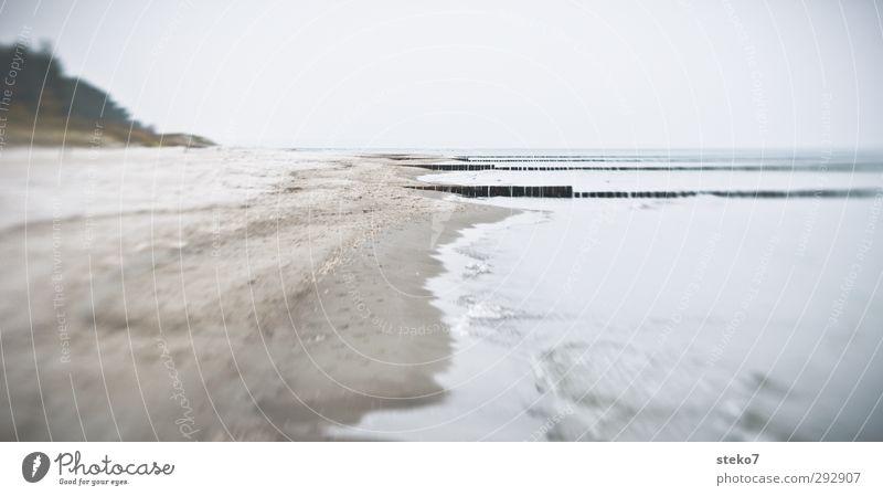 Winterstrand Meer Einsamkeit Winter Strand ruhig grau Küste Wellen trist Ostsee Buhne Zingst