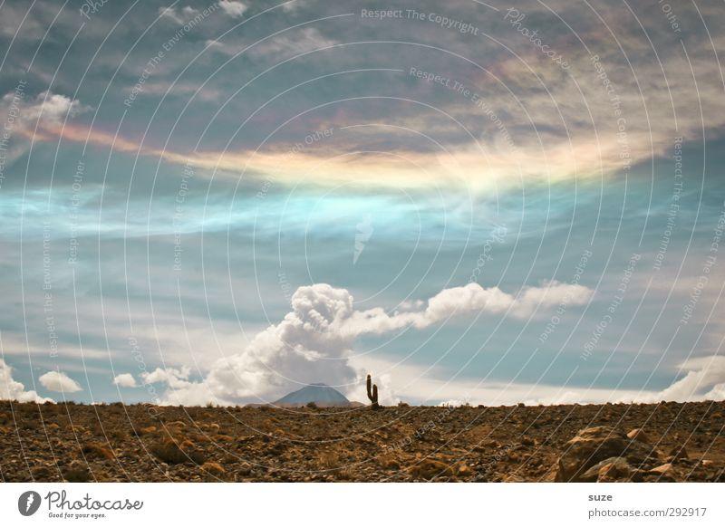 Der kleine Mann Himmel Natur Einsamkeit Landschaft Wolken Umwelt Wärme Horizont außergewöhnlich Wüste fantastisch Chile Südamerika Mexiko Kaktus