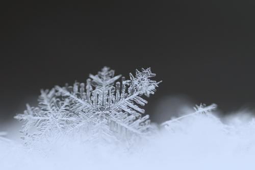 vergänglich Natur blau Umwelt kalt Schnee grau Schneefall Eis Wetter Schneelandschaft Schneeflocke Schneekristall