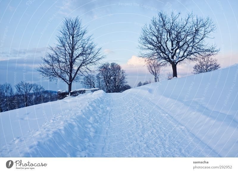 Winterspaziergang Ausflug Schnee Winterurlaub wandern Umwelt Natur Landschaft Himmel Klima Klimawandel Wetter Eis Frost Hügel frieren kalt natürlich Spazierweg