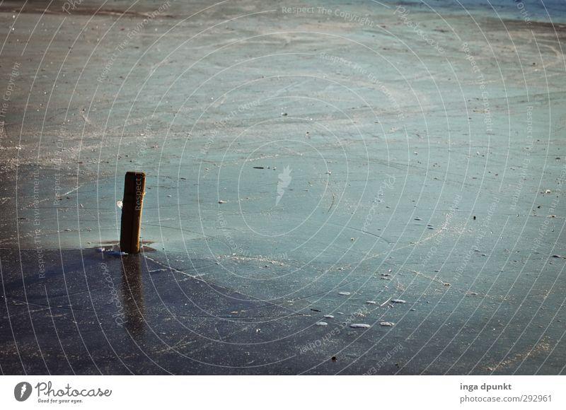 Eiswüste Umwelt Natur Landschaft Winter Klima Wetter Frost kalt Gefühle Stimmung Traurigkeit Einsamkeit gefroren dunkel Holzpfahl Pfosten Außenaufnahme