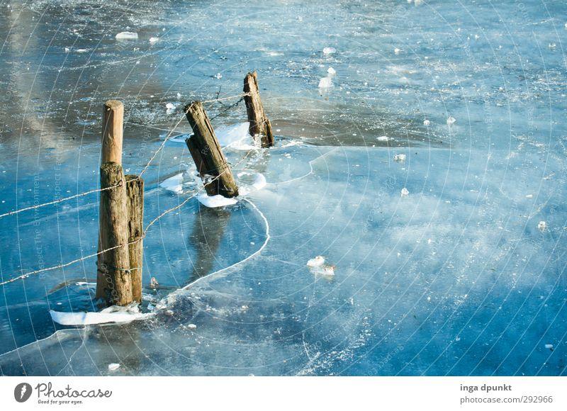Voll von Holzpfosten Umwelt Natur Landschaft Urelemente Wasser Himmel Wolken Winter Klima Eis Frost See Fluss Zaun Stacheldraht Barriere Draht Stacheldrahtzaun