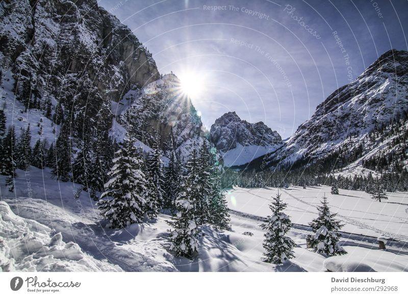 Wintertraum Himmel blau Ferien & Urlaub & Reisen weiß Baum Landschaft Wolken schwarz Wald Berge u. Gebirge Schnee Felsen Eis wandern Schönes Wetter