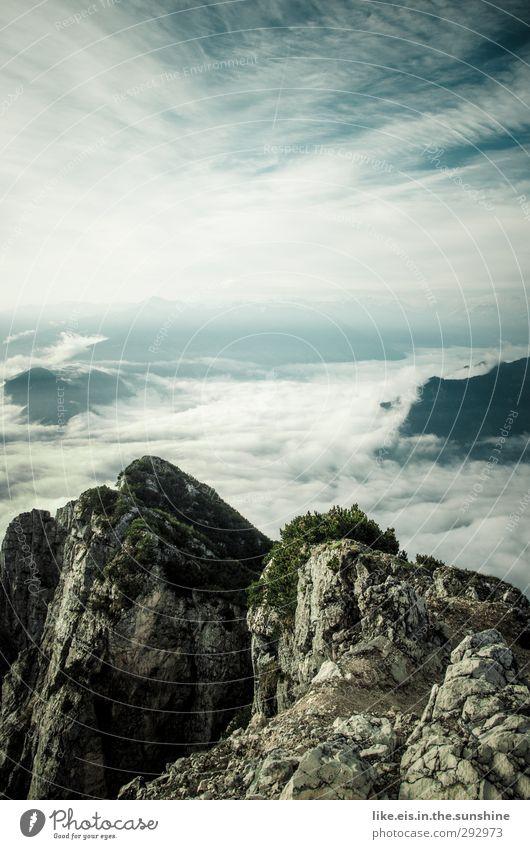 wolkenmeer Umwelt Natur Landschaft Pflanze Tier Urelemente Himmel Wolken Horizont Sommer Herbst Sträucher Hügel Felsen Alpen Berge u. Gebirge Gipfel Ferne