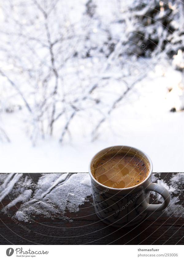 Etwas Warmes braucht der Mensch. Ferien & Urlaub & Reisen weiß ruhig kalt Schnee Leben Garten braun Eis Park Lebensmittel Wohnung Zufriedenheit Beginn Frost genießen