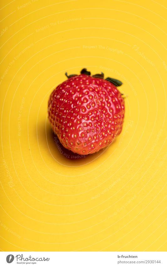 Süsses Früchtchen Lebensmittel Frucht Ernährung Bioprodukte Vegetarische Ernährung Gesunde Ernährung wählen beobachten Essen genießen frech frisch Gesundheit