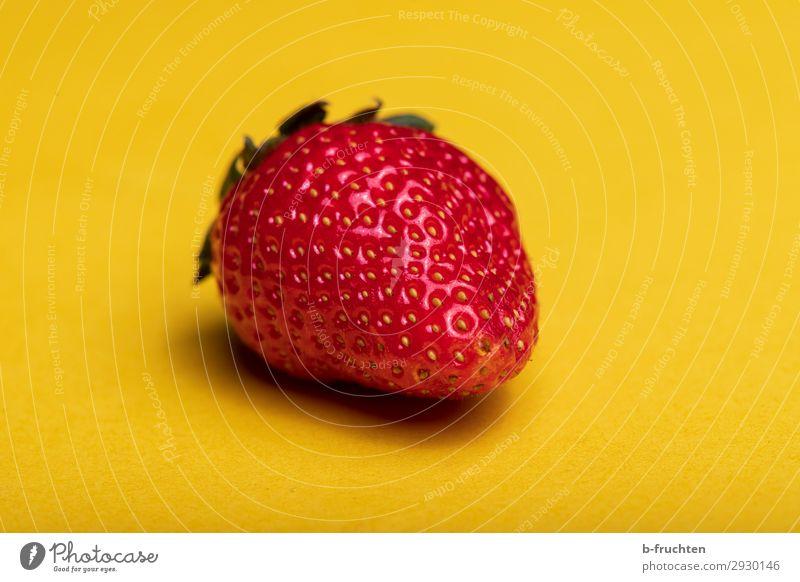 Erdbeere Lebensmittel Frucht Ernährung Bioprodukte Vegetarische Ernährung Gesunde Ernährung wählen beobachten kaufen Essen genießen frisch Gesundheit natürlich