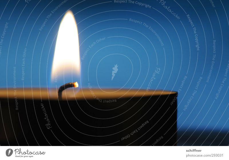 HOT LOVE | Flammende Liebe Weihnachten & Advent blau ruhig Anti-Weihnachten Wärme leuchten Brand Kerze brennen Kerzenschein Kerzendocht besinnlich