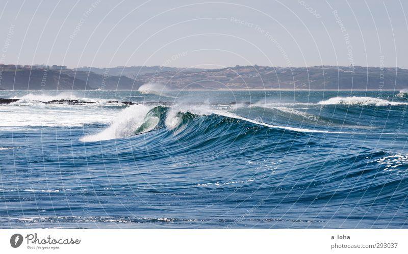real beauty lies within Umwelt Natur Urelemente Wasser Himmel Wolkenloser Himmel Sommer Wetter Schönes Wetter Wellen Küste Strand Meer Bewegung nass blau