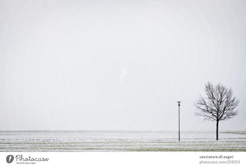 friends Umwelt Landschaft Pflanze Erde Himmel Horizont Winter Schnee Baum Feld Straßenbeleuchtung einfach frei Unendlichkeit kalt grau weiß friedlich