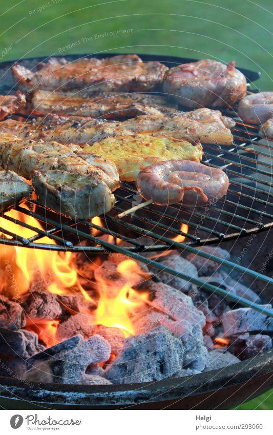 Fleisch und Bratwurst auf einem Grill mit Holzkohle und Flamme Lebensmittel Wurstwaren Ernährung Abendessen Grillen Steak Grillrost Grillkohle Grillsaison Feuer