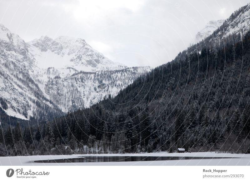 Bergsee Himmel Ferien & Urlaub & Reisen Pflanze Wasser weiß Baum Landschaft Wolken Winter Berge u. Gebirge Schnee Freiheit See Felsen Luft Eis