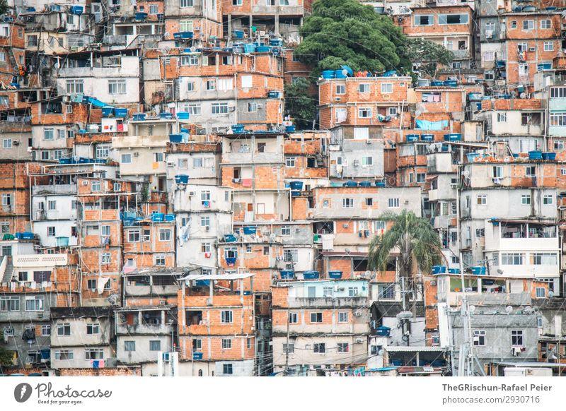 Favelas Stadt blau braun grün schwarz silber weiß Haus Bauwerk Armut Fenster Häusliches Leben Palme Brasilien Rio de Janeiro Außenaufnahme Textfreiraum unten