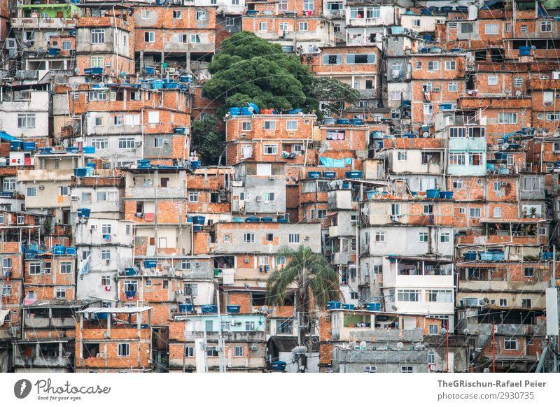 Favela Stadt blau braun orange schwarz weiß favela Rio de Janeiro Brasilien Haus Armut Fenster Rauschmittel Krieg Palme Tür Farbfoto Menschenleer