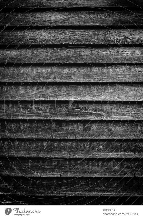 Altes Holz mit rostigen Schrauben Design Werkzeug Natur Metall Stahl Rost alt dreckig natürlich retro braun weiß schrauben Rust Hintergrund Konsistenz Kopf
