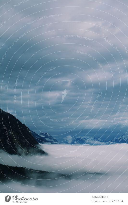 Auf dem Weg nach ganz oben Himmel Natur Ferien & Urlaub & Reisen schön Baum Landschaft Wolken Winter Umwelt Ferne Berge u. Gebirge Schnee Freiheit Felsen Eis