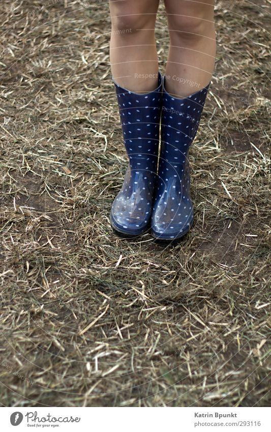 gumboots #3 Mensch Beine 1 Musikfestival schlechtes Wetter Wiese Gummistiefel stehen Farbfoto Außenaufnahme