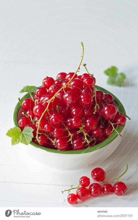 Rote Johannisbeeren in weiß-grüner Schale Frucht Bioprodukte Vegetarische Ernährung Diät Fingerfood Schalen & Schüsseln Gesunde Ernährung genießen frisch