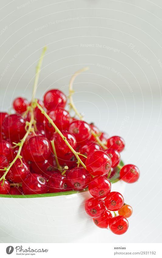 Rote Johannisbeeren Frucht Bioprodukte Vegetarische Ernährung Diät Fingerfood Schalen & Schüsseln Sommer Herbst frisch Gesundheit lecker sauer süß grün rot weiß