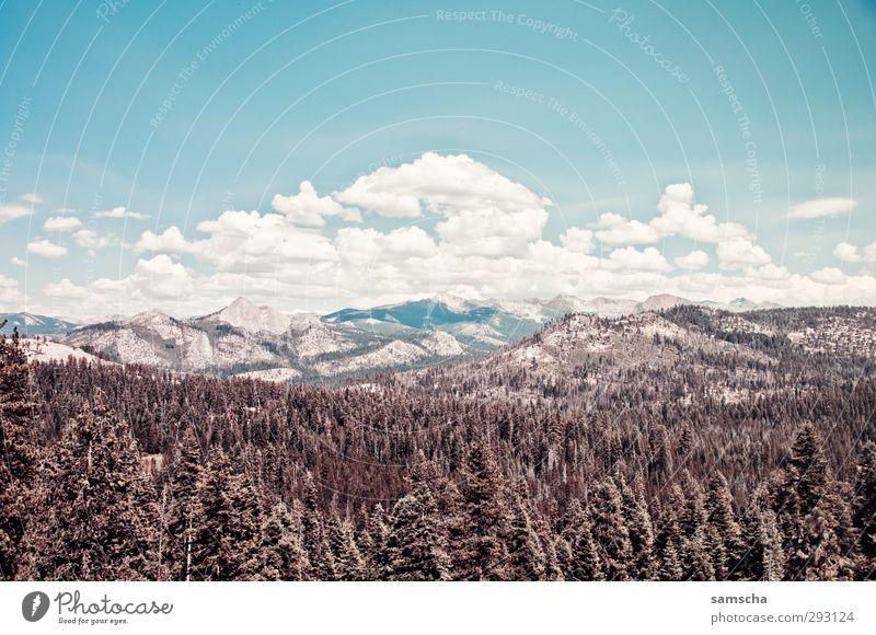 Yosemite Nationalpark Himmel Natur Ferien & Urlaub & Reisen Sommer Sonne Landschaft Wald Umwelt Berge u. Gebirge Freiheit Wetter wild Klima wandern Tourismus