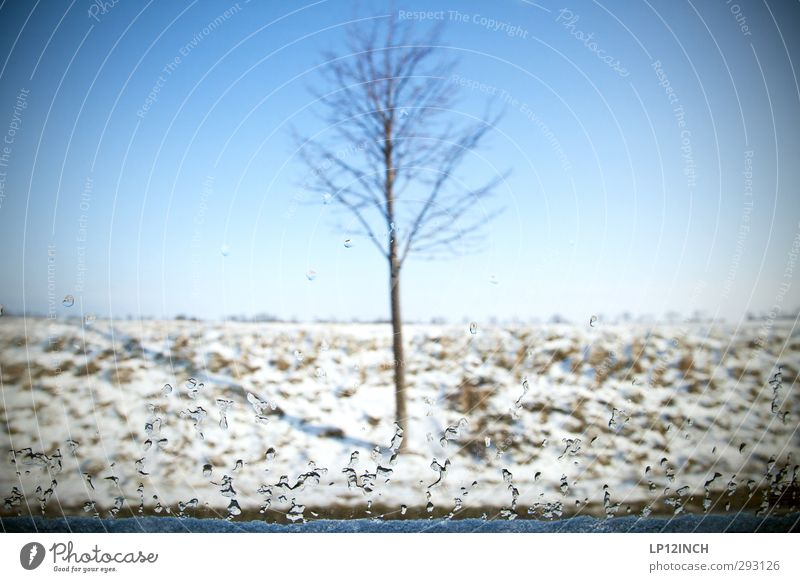 TrOPf. Ferien & Urlaub & Reisen Ausflug Winterurlaub Umwelt Natur Landschaft Schnee Baum Glas fahren kalt Umweltschutz Autofenster Autofahren Wassertropfen