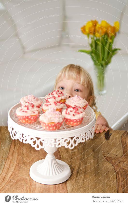 Die Versuchung Mensch Kind Mädchen feminin Essen Feste & Feiern Kindheit blond Wohnung Geburtstag Häusliches Leben Tisch niedlich süß beobachten Neugier