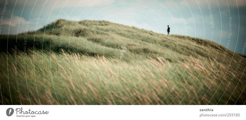 Horizon Natur Ferien & Urlaub & Reisen Erholung Landschaft Einsamkeit ruhig Umwelt Gras Küste Freiheit Horizont Idylle stehen Sträucher Pause Hoffnung