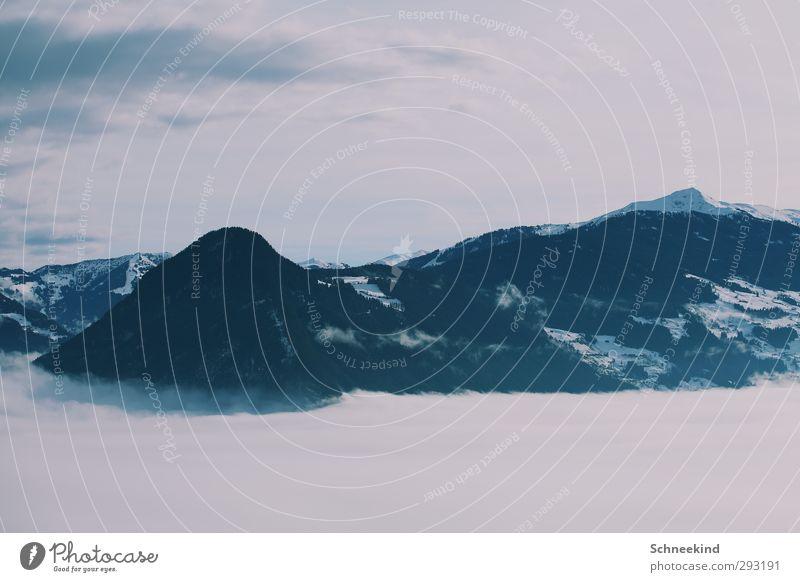 Über den Wolken.... Natur Ferien & Urlaub & Reisen schön Pflanze Baum Tier Landschaft Winter Umwelt Ferne Berge u. Gebirge Schnee Freiheit natürlich Wind Klima