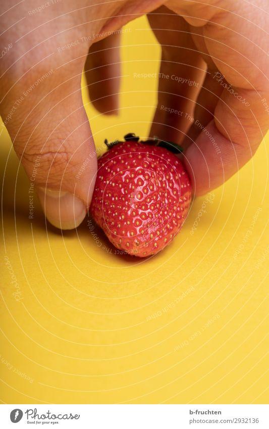 vernaschen Lebensmittel Frucht Ernährung Bioprodukte Vegetarische Ernährung kaufen Gesundheit Gesunde Ernährung Finger wählen gebrauchen berühren Essen