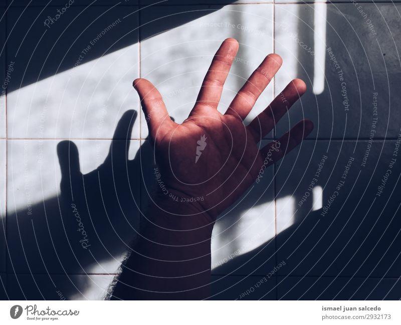 Handschattensilhouette an der Wand Finger Mensch Schatten Lichterscheinung Sonnenlicht Silhouette Körper Innenaufnahme sehr wenige minimalistisch Handfläche