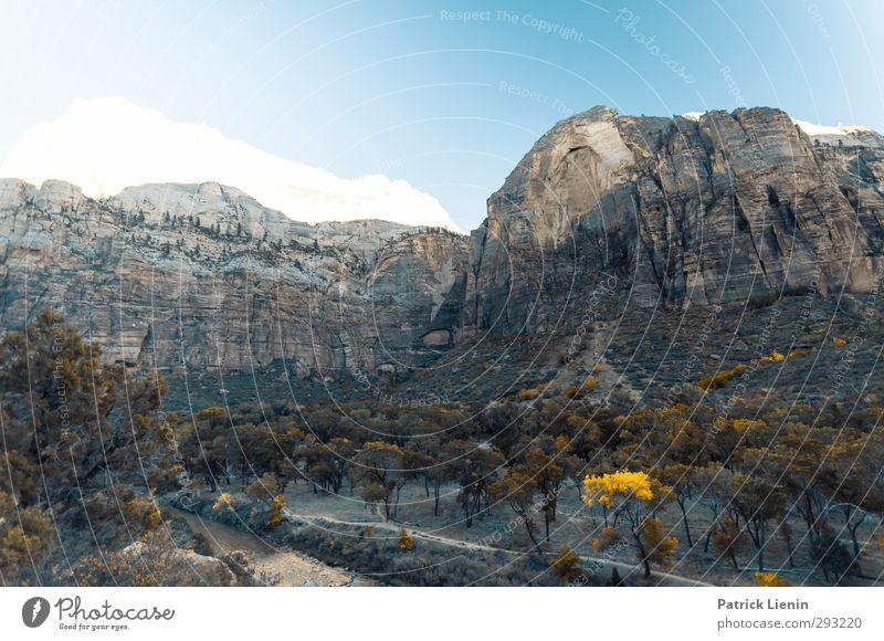 Zion National Park Natur Landschaft Umwelt Wetter Klima Beginn ästhetisch Abenteuer Urelemente
