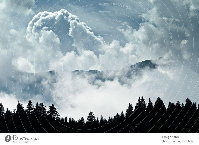 Wolkenberge Himmel Gewitterwolken Klima Wetter Schönes Wetter Wald Alpen Berge u. Gebirge Gipfel Kanton Tessin Schweiz Europa bedrohlich gigantisch groß blau