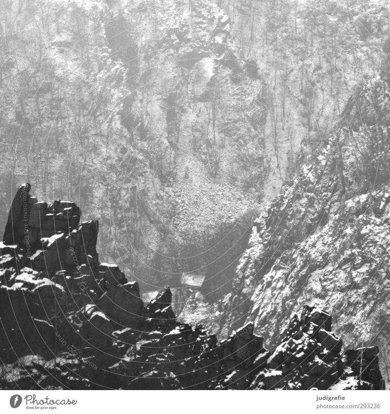 Bodetal Umwelt Natur Landschaft Winter Klima Schnee Felsen Berge u. Gebirge Schlucht Thale dunkel kalt natürlich wild Stimmung Schwarzweißfoto Außenaufnahme