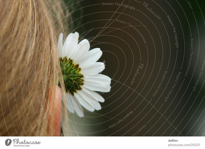 Simone das Blumenmädchen Gänseblümchen Frau Mädchen blond Pflanze Haare & Frisuren Ohr