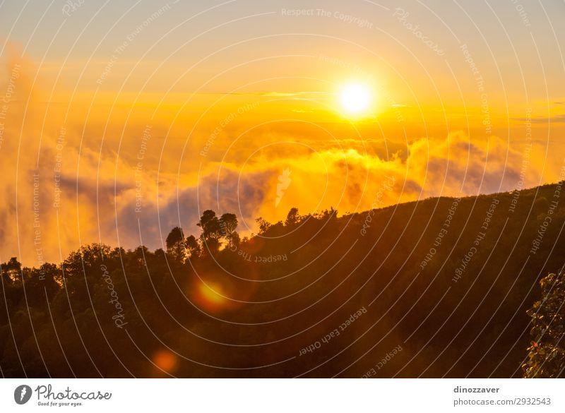 Doi inthanon mountains, Thailand schön Ferien & Urlaub & Reisen Tourismus Freiheit Sommer Berge u. Gebirge wandern Skifahren Umwelt Natur Himmel Wolken Baum