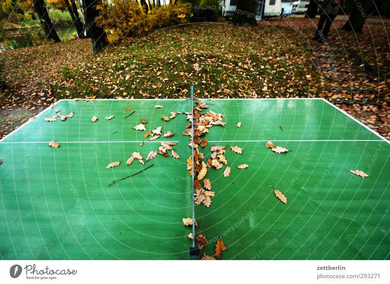 Tischtennis Natur grün Umwelt Sport Herbst Spielen Garten Park Wetter Klima Freizeit & Hobby wandern leer Fitness Herbstlaub Sport-Training