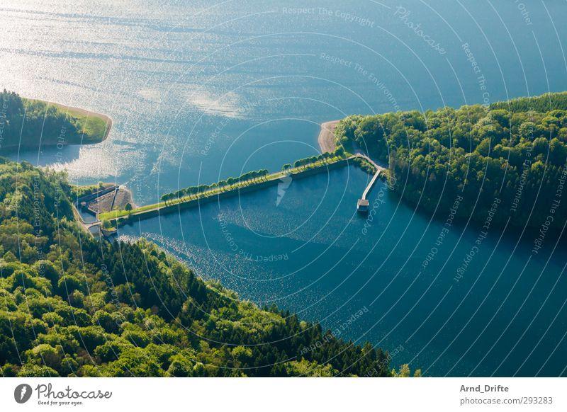Strich in der Landschaft Natur Baum Wald Seeufer grün Perspektive Allee damm Staumauer Stausee Farbfoto mehrfarbig Außenaufnahme Luftaufnahme