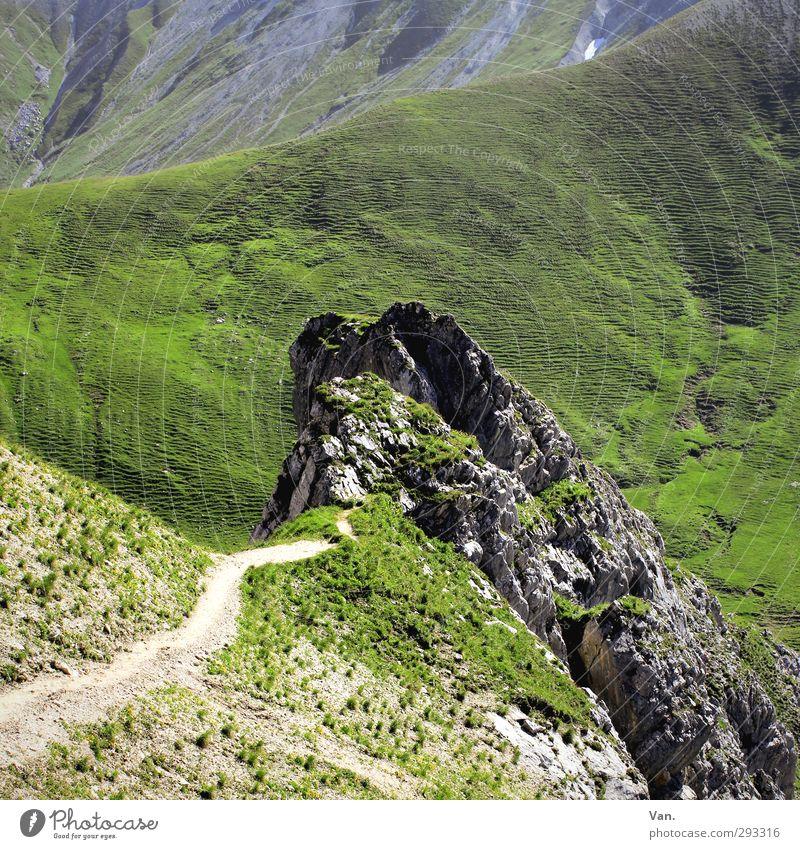 Zwischenziel Ferien & Urlaub & Reisen Berge u. Gebirge wandern Landschaft Pflanze Erde Gras Hügel Felsen Alpen Wege & Pfade grau grün Farbfoto mehrfarbig