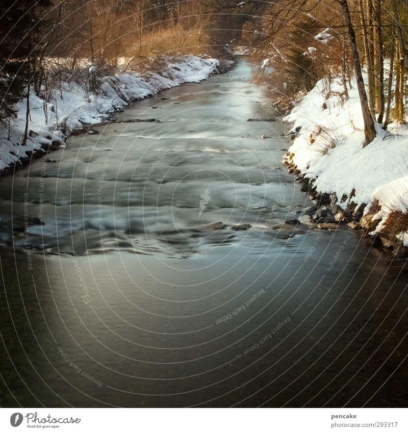 alles in fluss Natur Wasser Erholung Landschaft Winter Wald Bewegung Freiheit Schwimmen & Baden fliegen Wellen laufen Fluss Wohlgefühl Flussufer Meditation