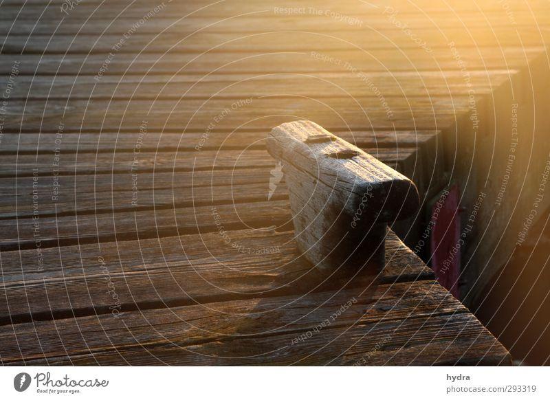 festmachen alt Sommer Sonne ruhig Holz braun Kraft leuchten Schönes Wetter Sicherheit Hafen Steg Segeln Schifffahrt Fernweh