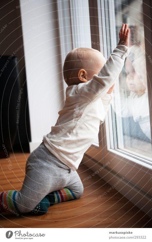 kleinkind am fenster Mensch Kind Hand Spielen Junge Denken Beine Körper Kindheit blond maskulin sitzen Finger beobachten Bildung berühren