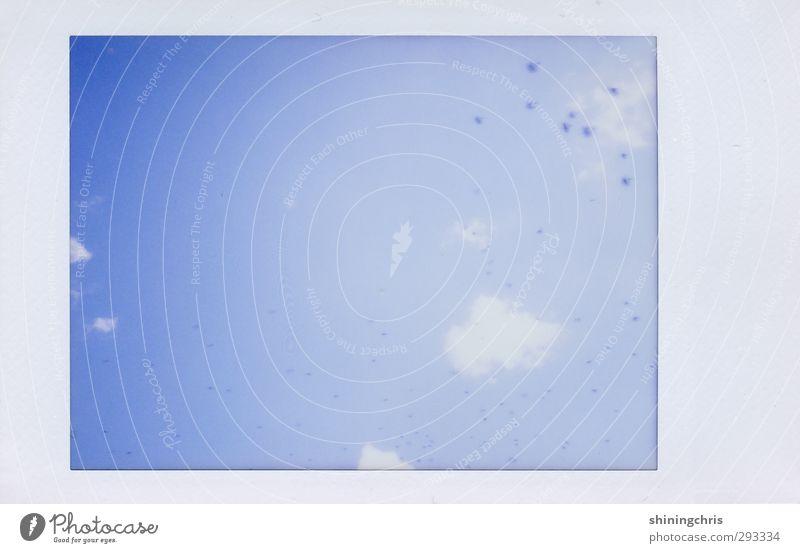 himmel(s)blau Himmel nur Himmel Wolken Schönes Wetter Vogel Schwarm frei Unendlichkeit Gedeckte Farben Außenaufnahme Polaroid Textfreiraum links