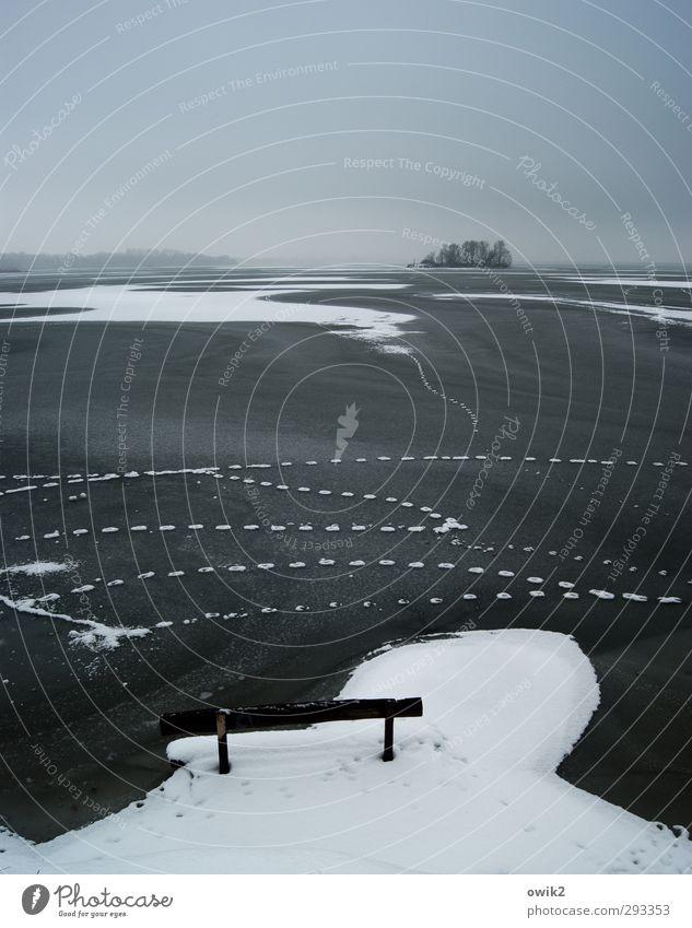 Nach der Flut Umwelt Natur Landschaft Himmel Wolken Horizont Winter Klima Wetter Schönes Wetter Eis Frost Schnee Baum Bucht Insel See frieren stehen warten kalt